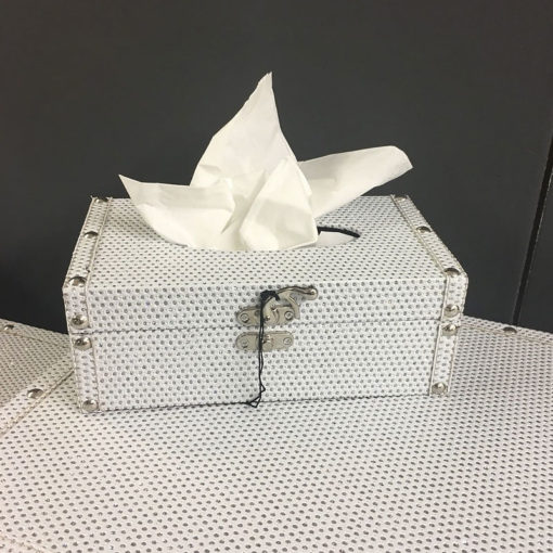 Blitz Sparkle Crystal White Standard Tissue Box Cover